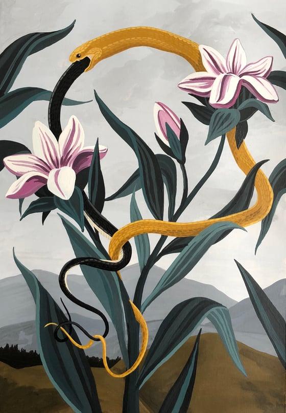Image of Serpiente dorada