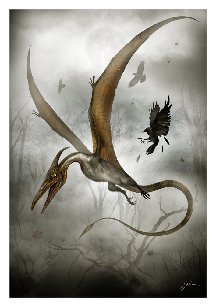 Image of The Texas Pterosaur