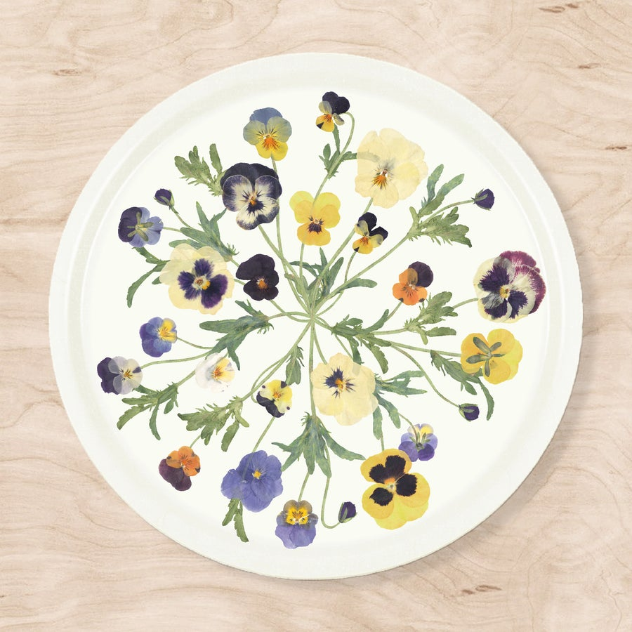 Image of NEW! Pansy Tray