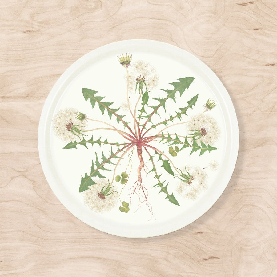 Image of NEW! Dandelion Tray