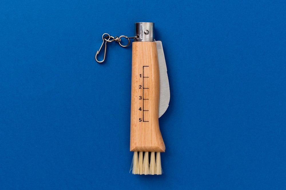Image of COLTELLO COGLI FUNGHI / MUSHROOM KNIFE