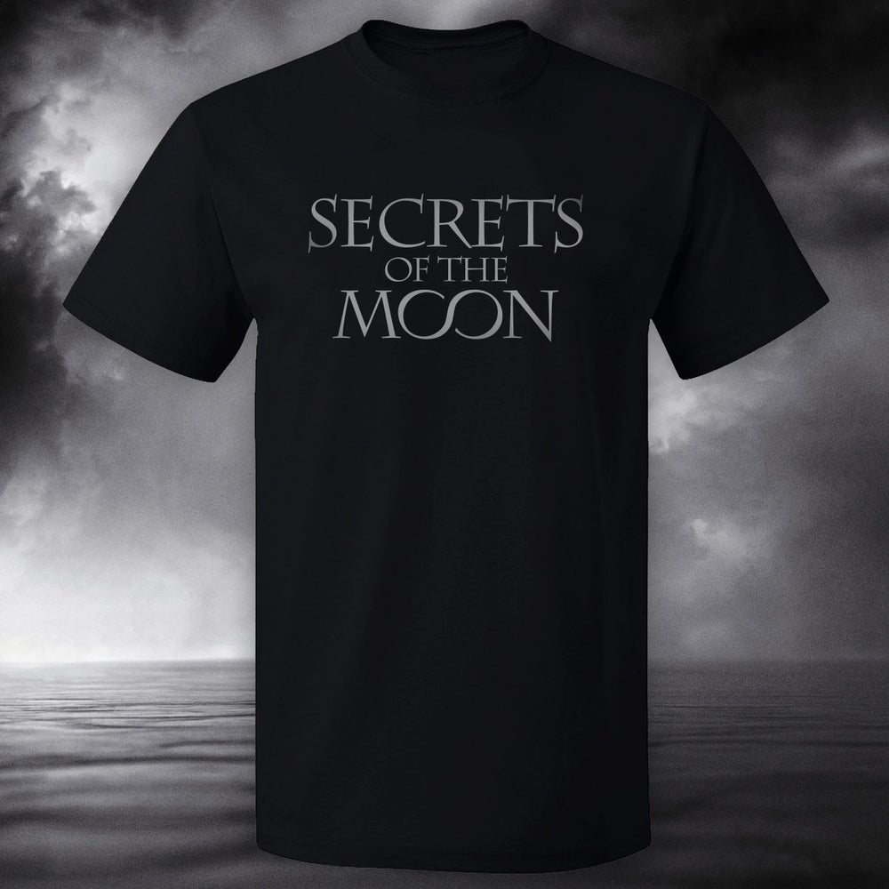 Image of Logo T-Shirt (limited edition, silver print)