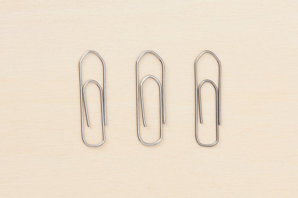 Image of FERMAGLI LEONE / LEONE PAPERCLIPS