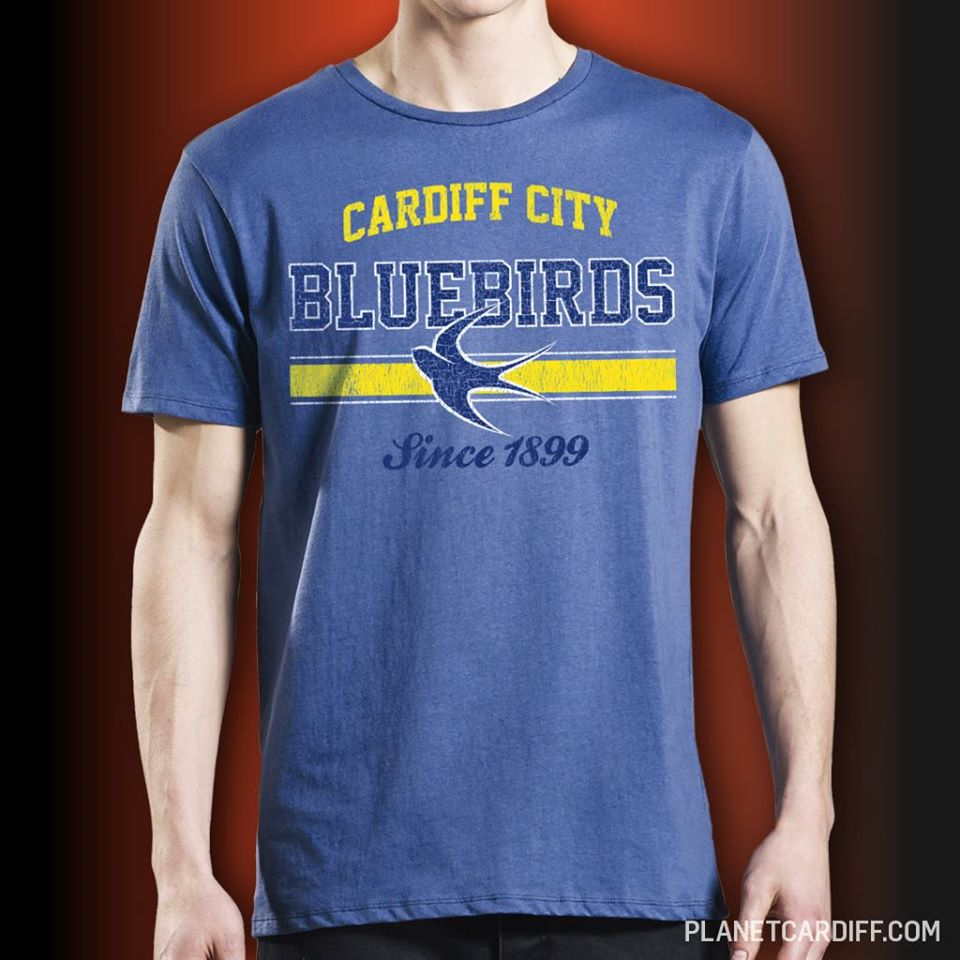 Image of BLUEBIRDS cardiff city