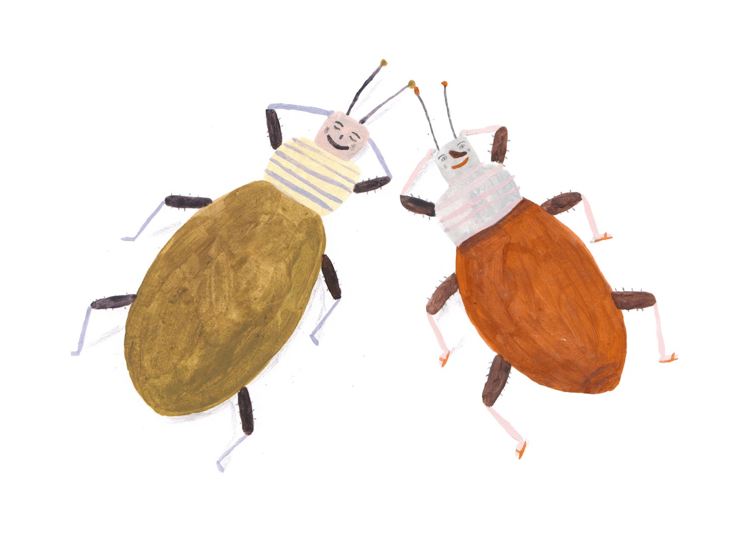Image of Beetles