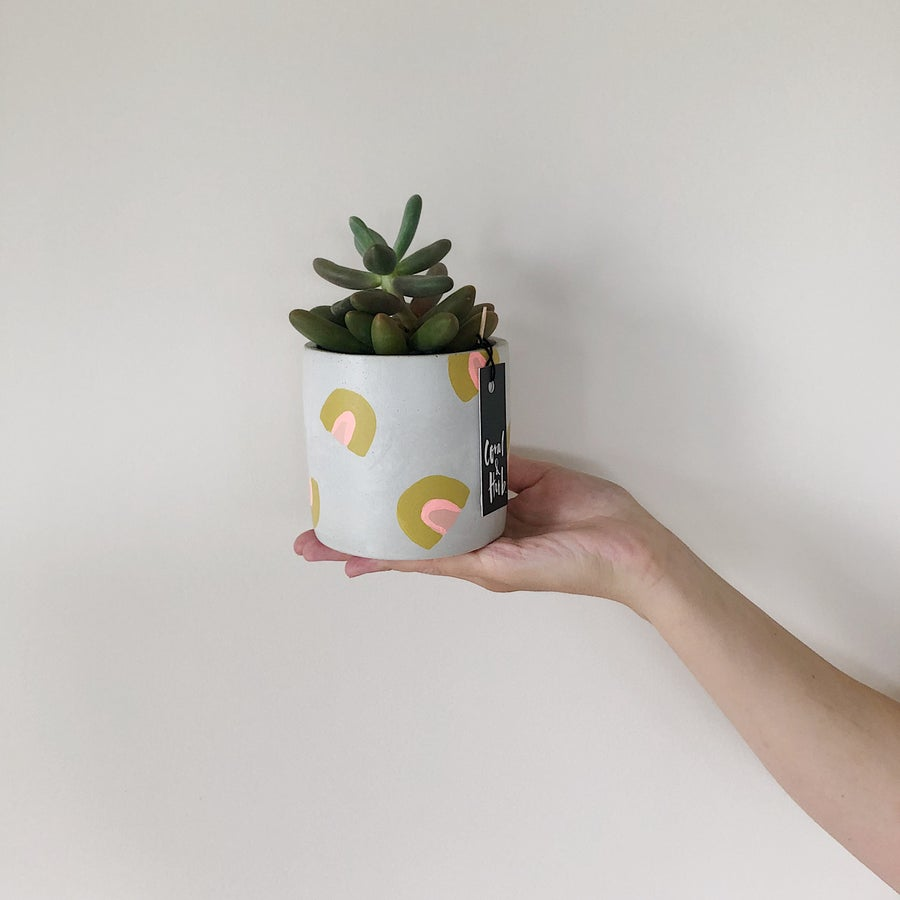Image of Planter [Natural Grey + Rainbow]