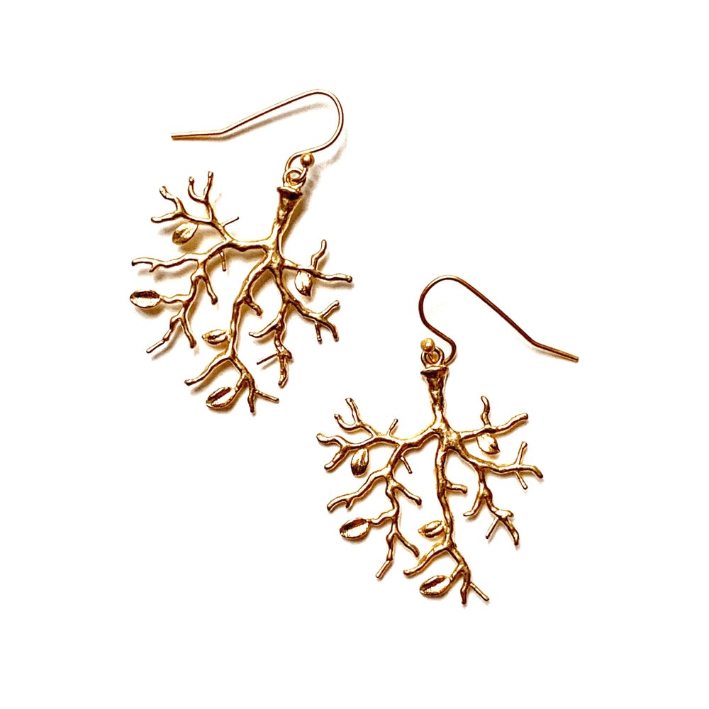 Image of ERBALUNGA earrings