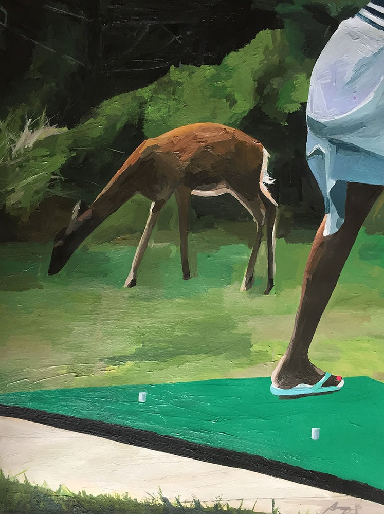 Image of Pitch and Putt