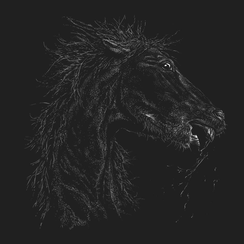 Image of »Horse« Artprint