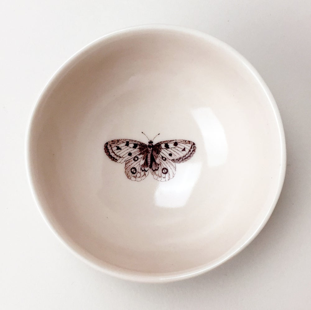 Image of roly poly bowl with butterfly, rose