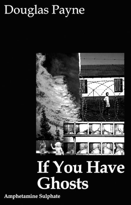 Image of <b>If You Have Ghosts</b>  Douglas Payne
