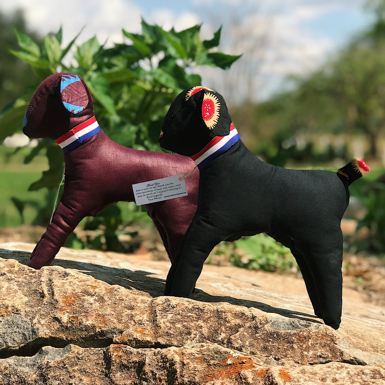 Image of Nefertari Pup