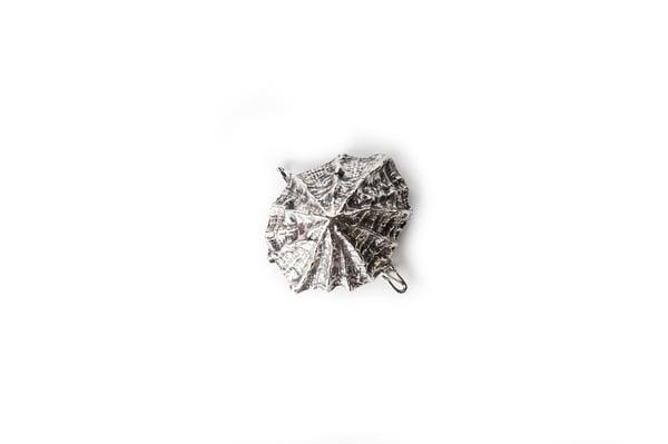 Image of Lapa brooch