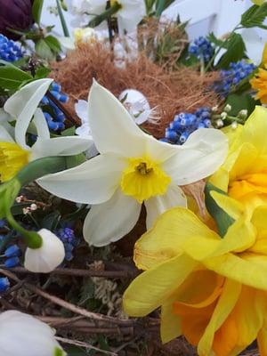 Image of Easter Nest Workshop