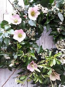 Image of Hellebore & Blossom Wreath Workshop