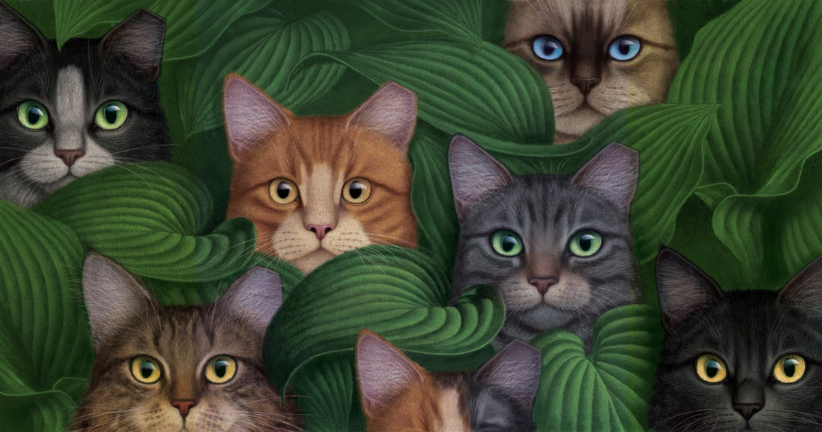Image of Cats in Hosta archival print