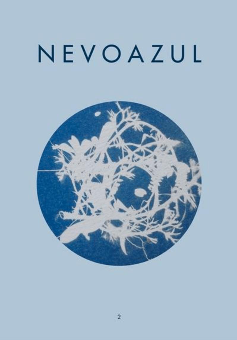 Image of Nevoazul Nº2