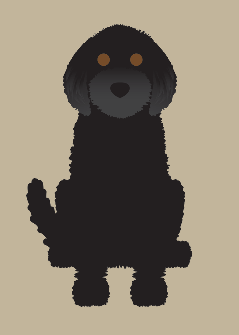 Image of Labradoodle Collection