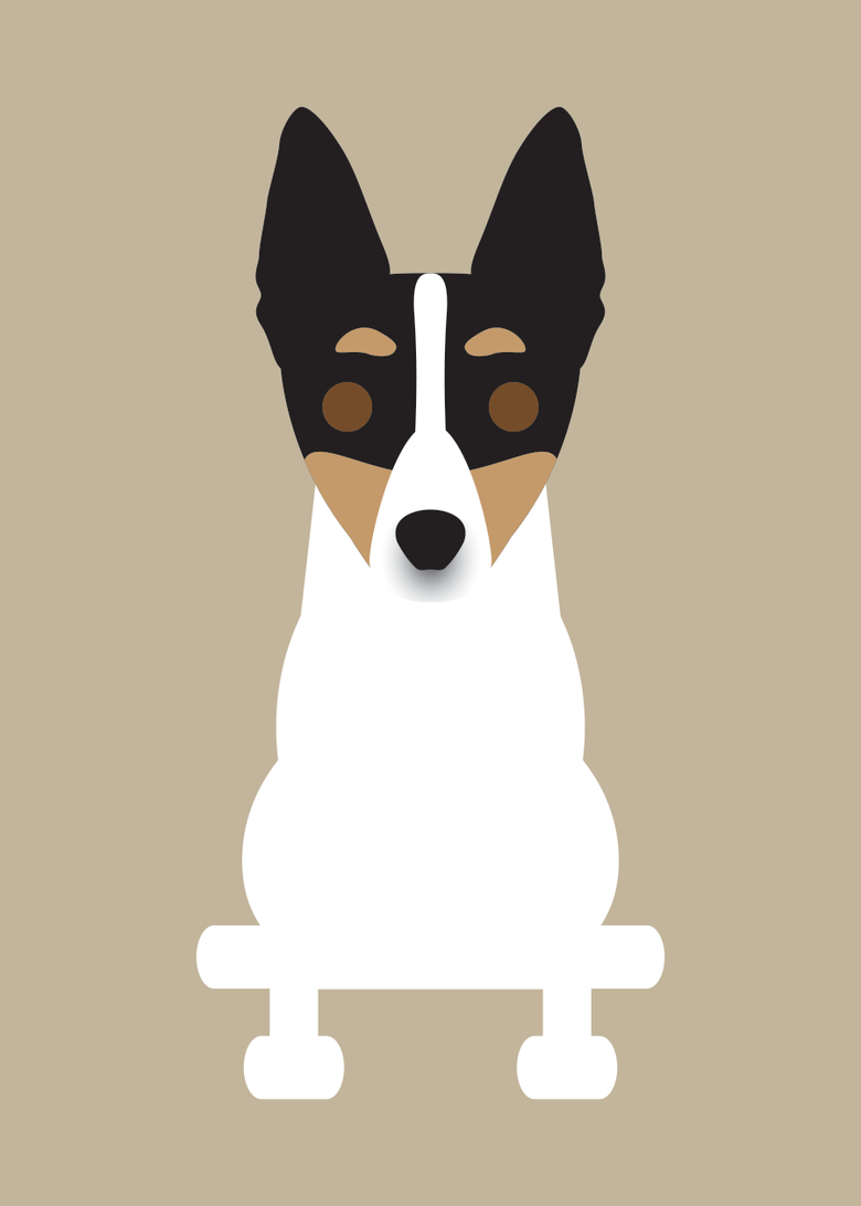 Image of Rat Terrier Collection