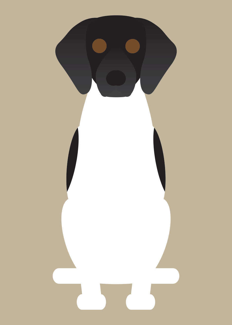 German Shorthaired Pointer Collection