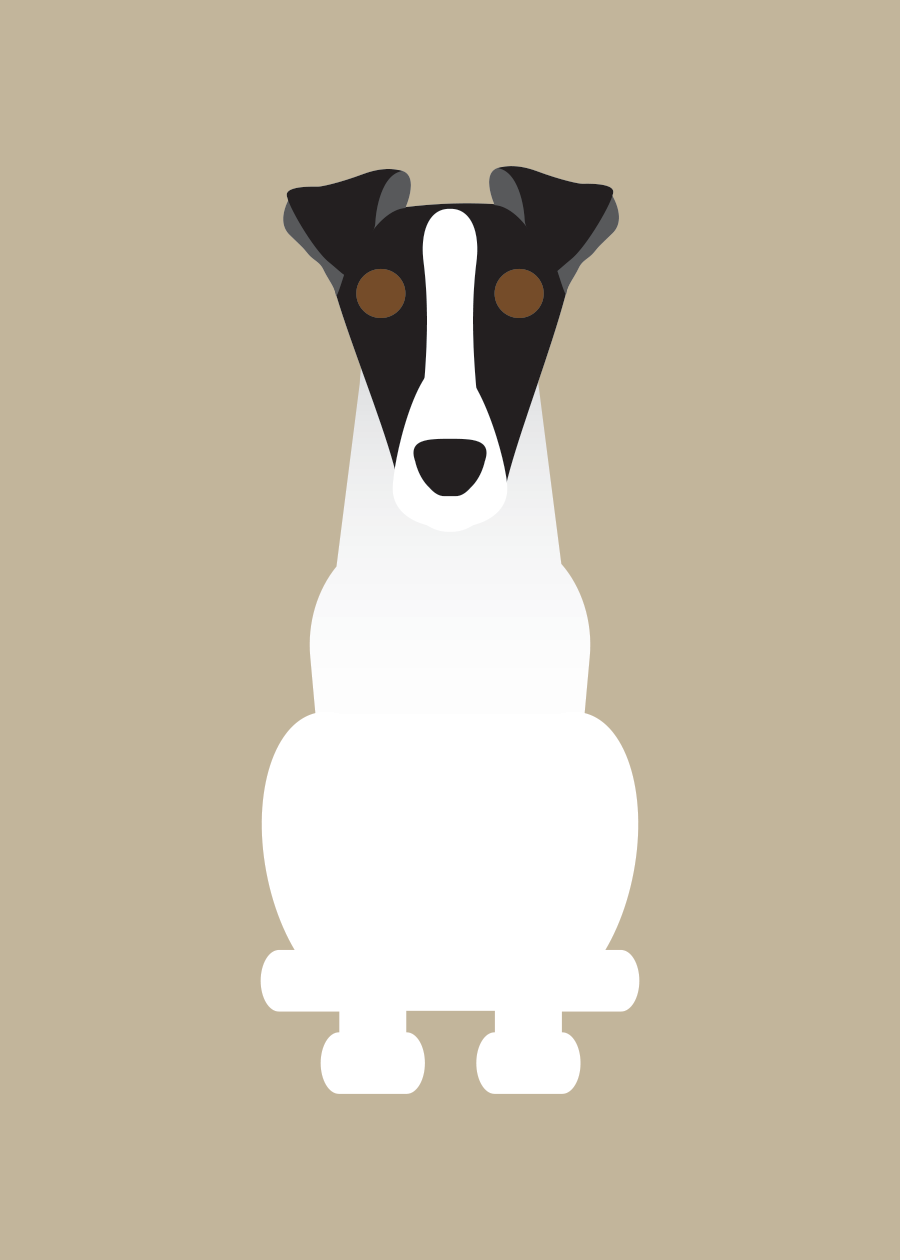 Fox Terrier Collection