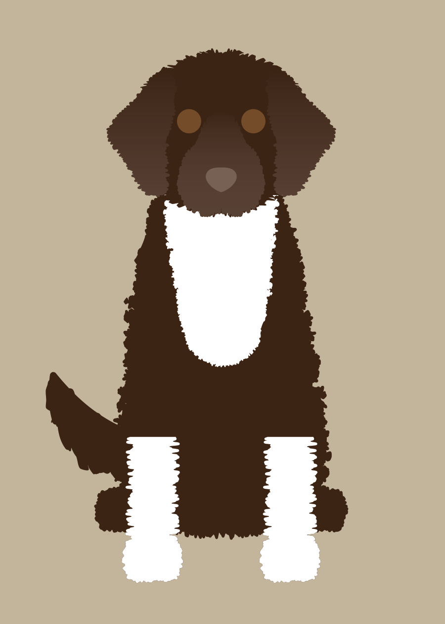 Portuguese Water Dog Collection
