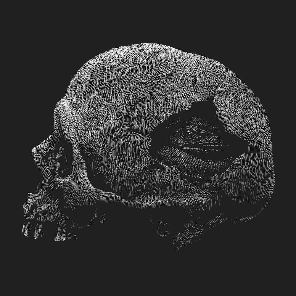 Image of »Skull« Art print.