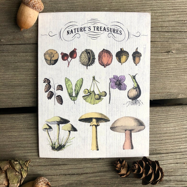 Image of Nature's Treasures Card
