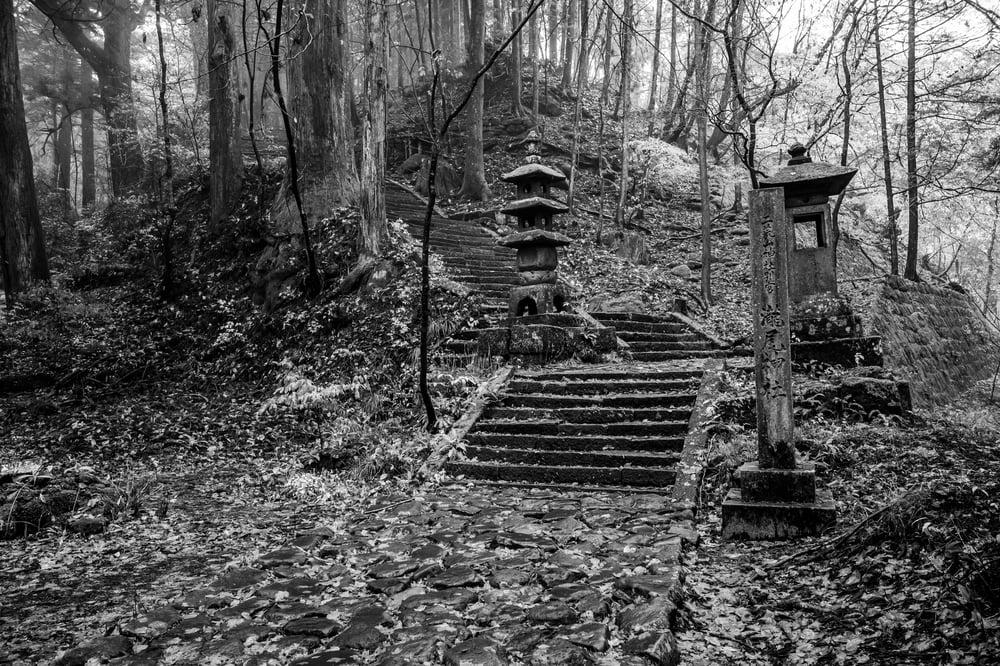 "Image of Forest Shrine, Nikko - 11"" x 16"""