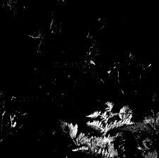 Image of Oakeater/Mamiffer Split LP