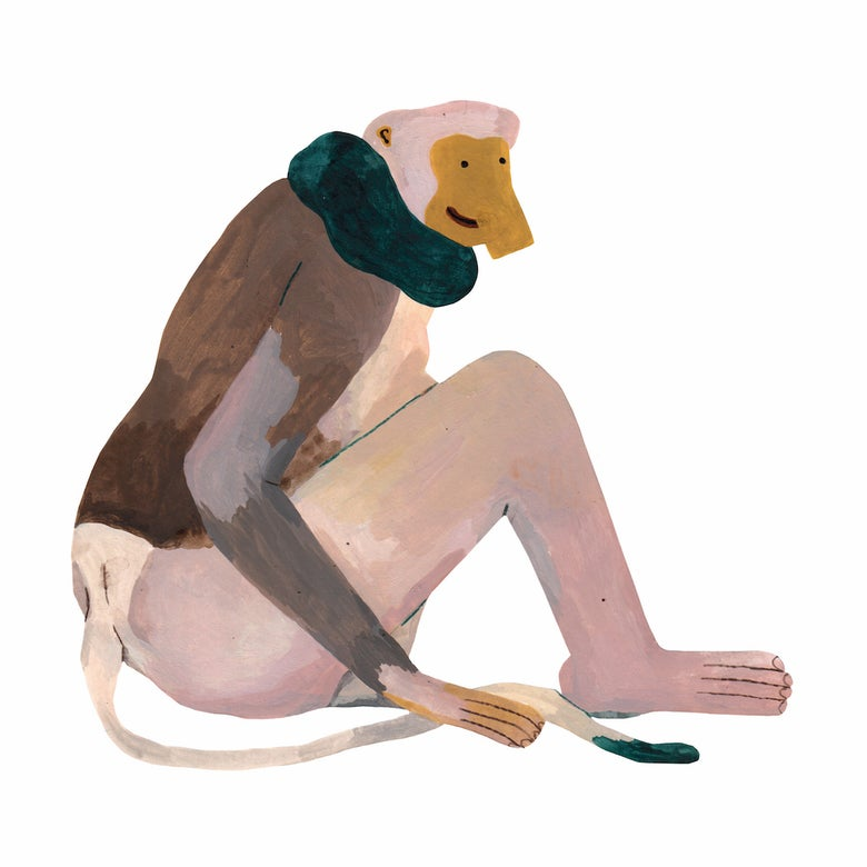 Image of Kravle Abe / Sitting Monkey