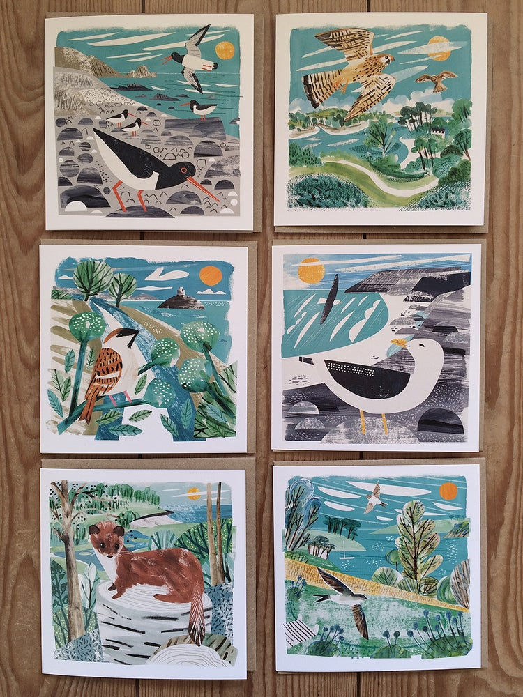 Image of Cornwall Nature Greetings Cards - Pack of 6