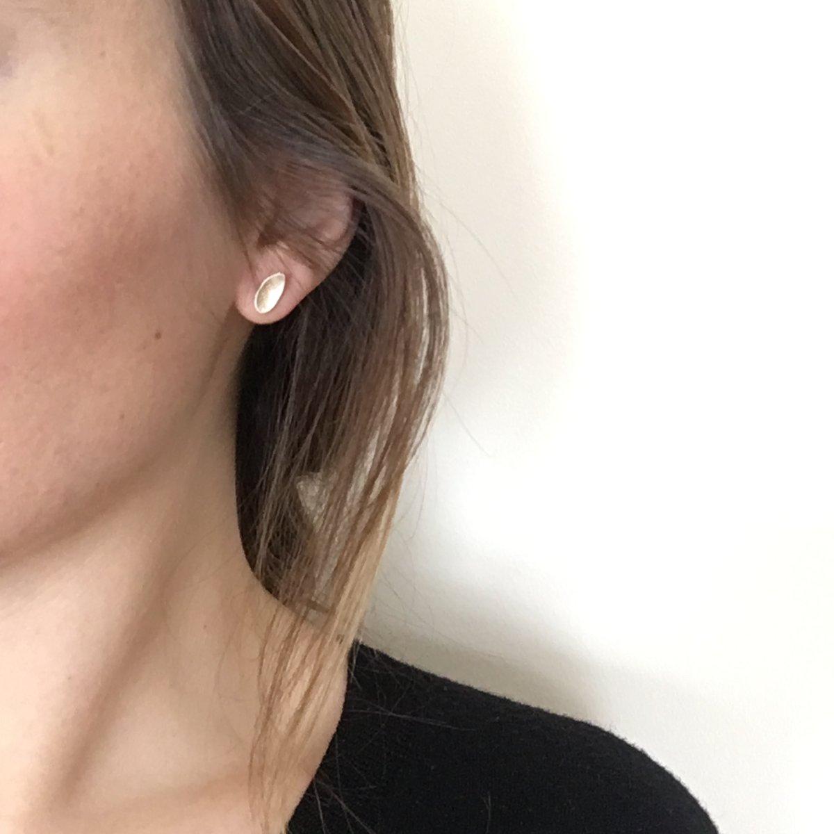 Image of pod earring