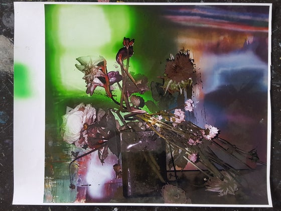 Image of  Unique, non-archival, digital ink-jet print signed by the artist  #87