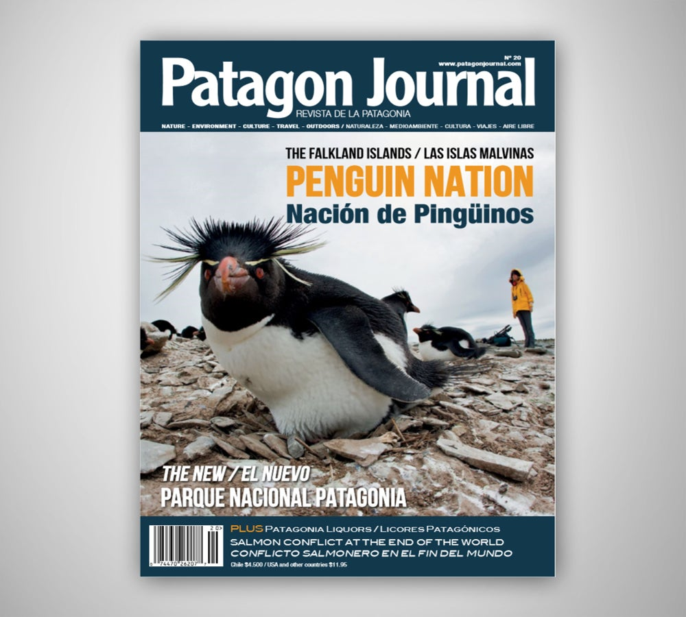 Image of Patagon Journal #20