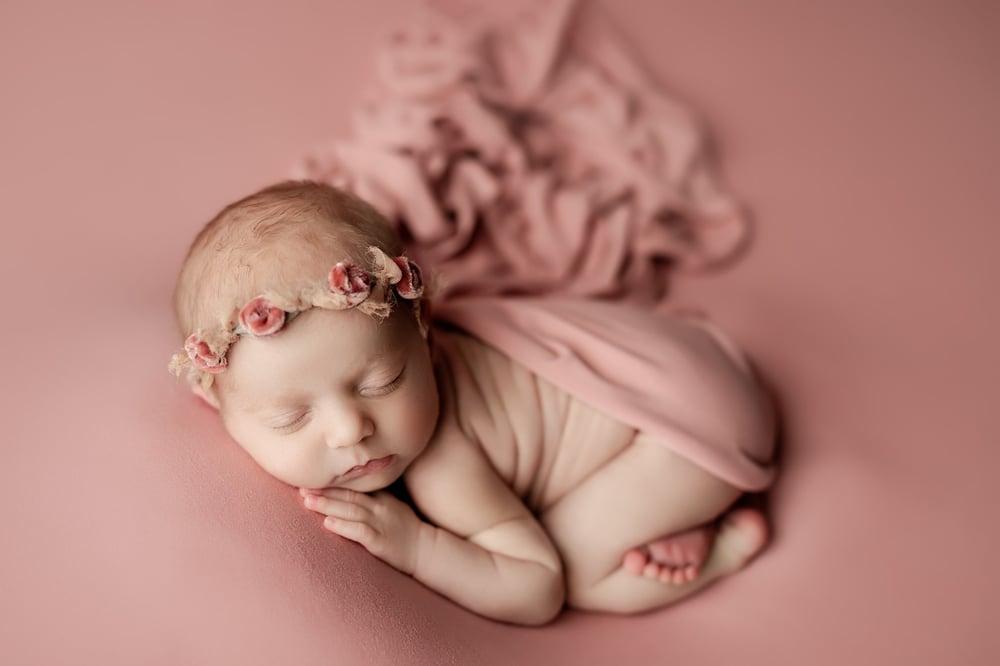Image of Sawyer BabyPlush Backdrop - Sahara rose