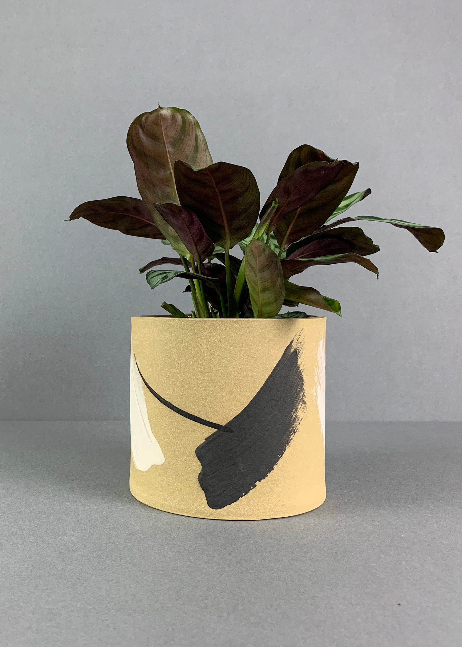 Image of Medium Matt Painterly Yellow Plant Pot