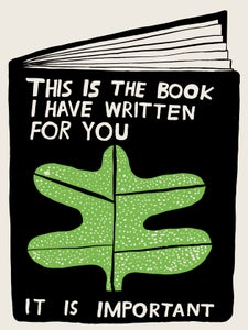 Image of THIS IS THE BOOK I HAVE WRITTEN FOR YOU