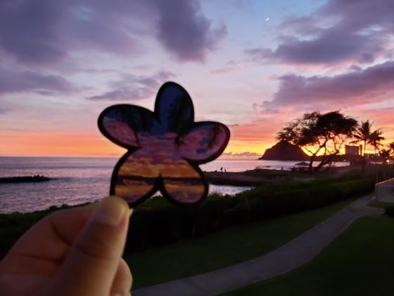 Image of Makaha plumeria sunset