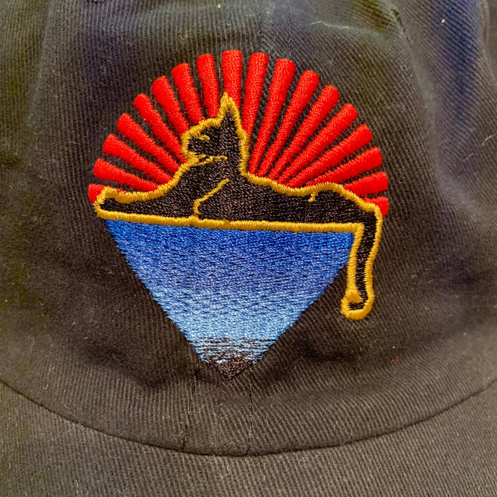 Image of NEW Cats Hats - Officially Licensed