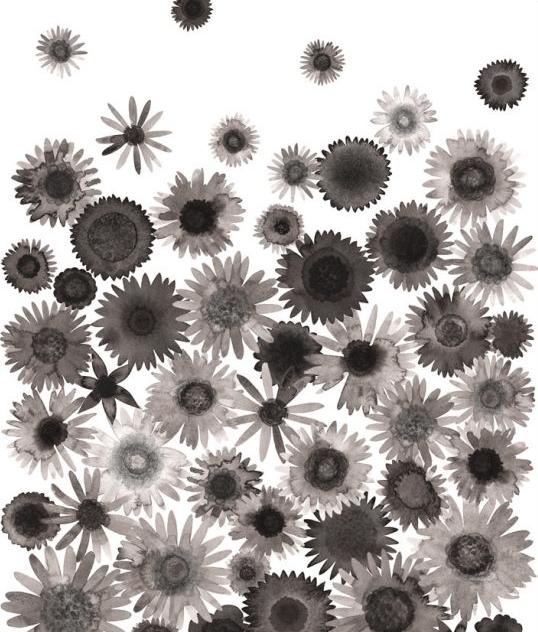 Image of Greeting Card - Drifting Daisies