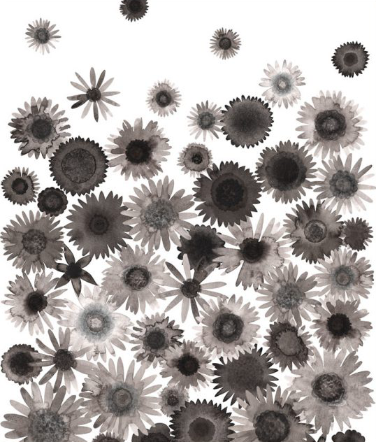 Image of Greeting Card - Drifting Daisies