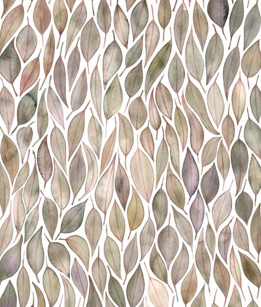 Image of Greeting Card - Floribunda Eucalyptus
