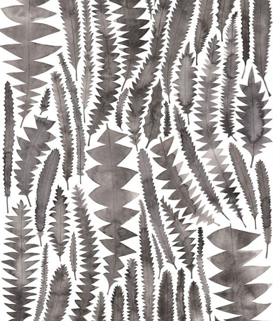 Image of Greeting Card - Charcoal Banksia Leaves