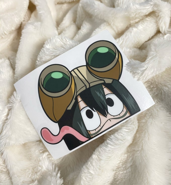 Image of FROPPY
