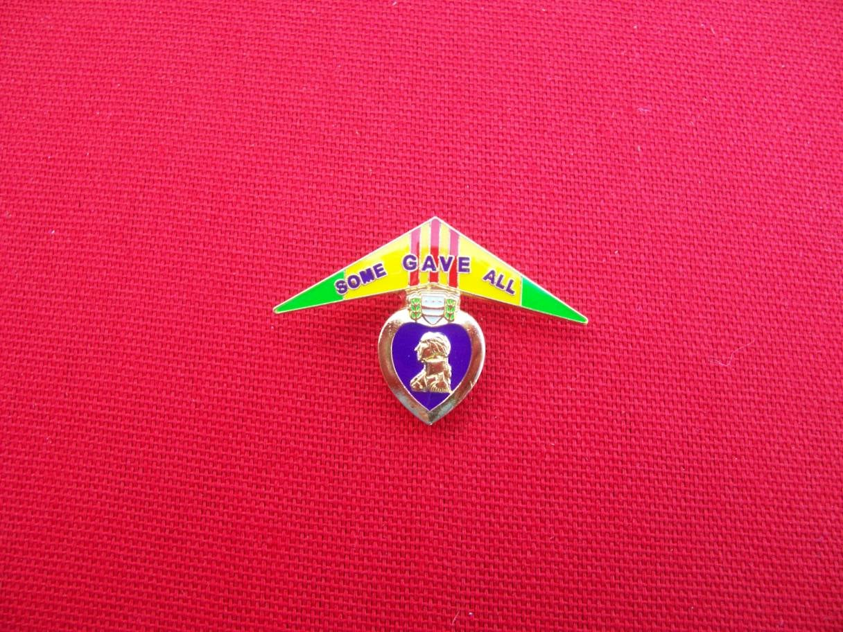 Image of Vietnam Veteran Purple Heart Wall pin
