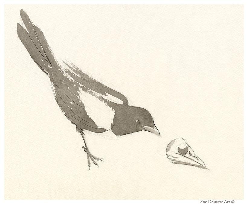 Image of Magpie Memento Mori