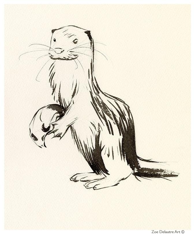Image of Sea Otter Memento Mori