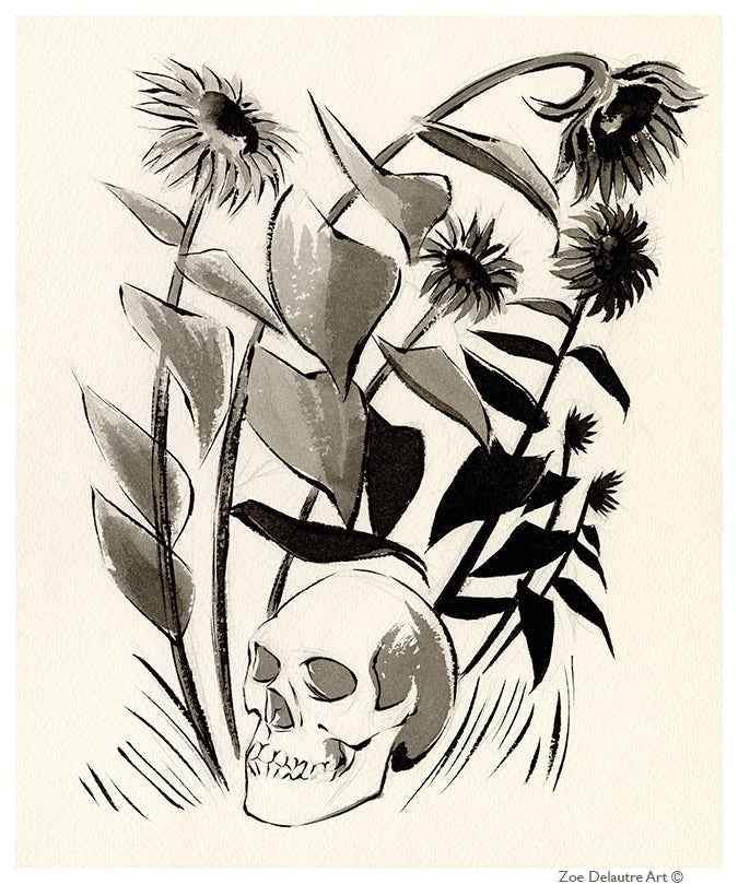 Image of Skull Memento Mori