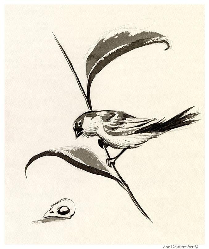 Image of Sparrow Memento Mori